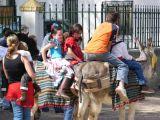 Romería de la Malena 2006 109