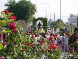 Romería de la Malena 2006 55