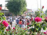 Romería de la Malena 2006 65