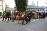 San Anton 2007. Bendición. Fotos de Emilia Hoyo 10