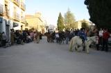 San Anton 2007. Bendición. Fotos de Emilia Hoyo 28