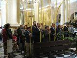 Semana Santa 2008. Domingo de Ramos 10
