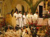 Semana Santa 2008. Domingo de Ramos 11