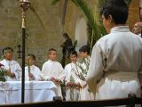Semana Santa 2008. Domingo de Ramos 17