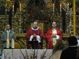 Semana Santa 2008. Domingo de Ramos 19
