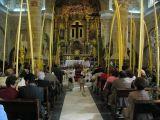 Semana Santa 2008. Domingo de Ramos 1