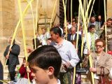 Semana Santa 2008. Domingo de Ramos 33