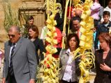Semana Santa 2008. Domingo de Ramos 38