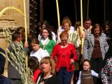 Semana Santa 2008. Domingo de Ramos 41