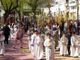 Semana Santa 2008. Domingo de Ramos 60