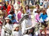 Semana Santa 2008. Domingo de Ramos 64