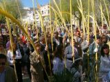 Semana Santa 2008. Domingo de Ramos 66