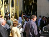 Semana Santa 2008. Domingo de Ramos 68