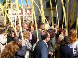 Semana Santa 2008. Domingo de Ramos 69