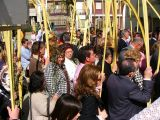 Semana Santa 2008. Domingo de Ramos 70