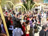 Semana Santa 2008. Domingo de Ramos 71