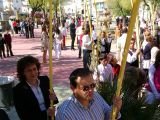 Semana Santa 2008. Domingo de Ramos 72