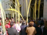 Semana Santa 2008. Domingo de Ramos 73