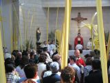 Semana Santa 2008. Domingo de Ramos 77