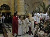 Semana Santa 2008. Domingo de Ramos 7