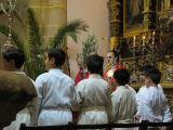 Semana Santa 2008. Domingo de Ramos 8