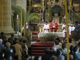 SemanaSanta-2009. Domingo de Ramos 129