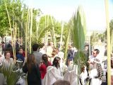 SemanaSanta-2009. Domingo de Ramos 24
