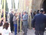 SemanaSanta-2009. Domingo de Ramos 28