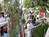 SemanaSanta-2009. Domingo de Ramos 55