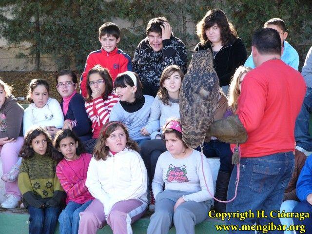 Exbición de rapaces en el Colegio José Plata-4-12-2009_61