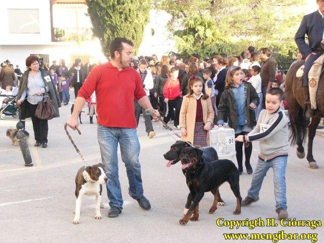 San Antón-2011-1_112