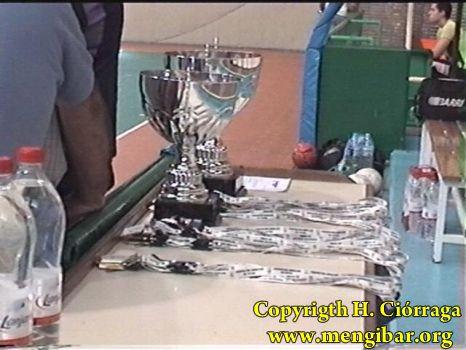 Final del campeonato de Andalucía- modalidad de cadetes de Fútbol Sala_84