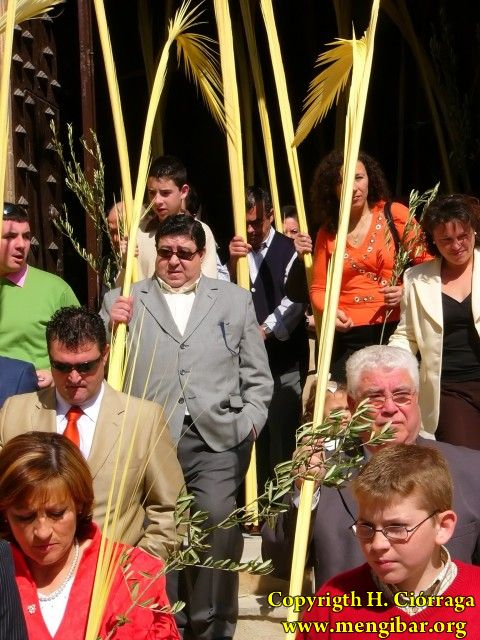 Semana Santa 2008. Domingo de Ramos 46