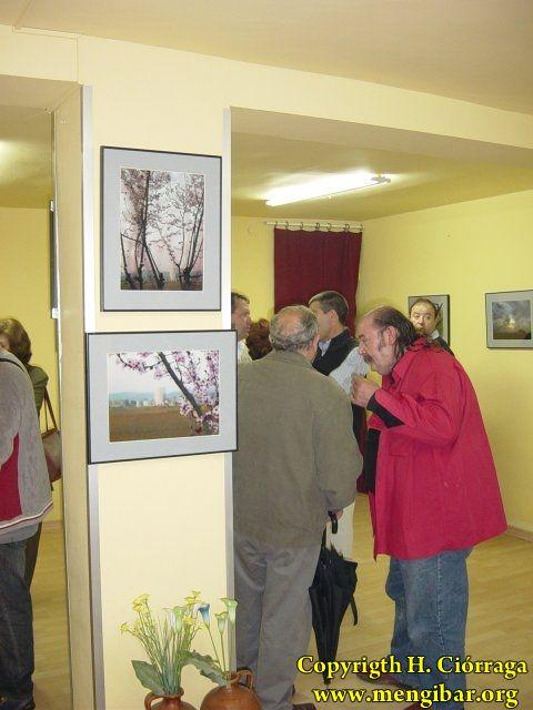 Exposición de Alfonso Infantes 7