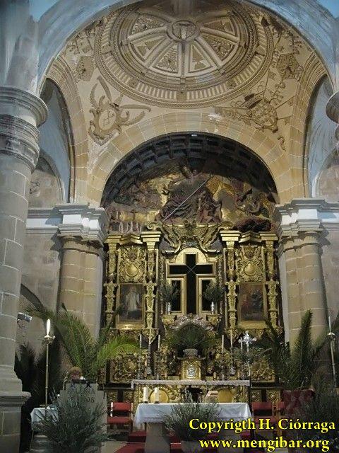 SemanaSanta-2009. Domingo de Ramos 132